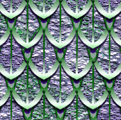 Green and Purple Dragon Scales