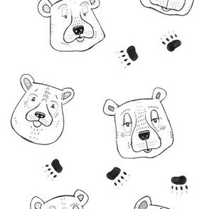 Bears and Paw Prints