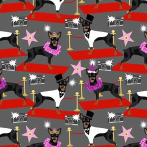 miniature pinscher fashion show red carpet paparazzi dog design, cute dogs fabric - charcoal