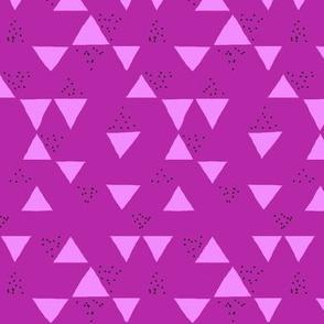Berry Geometric Triangle Speckles