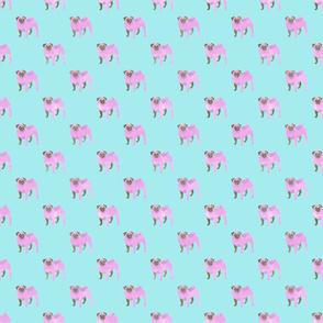 Pink Pugs (teal)