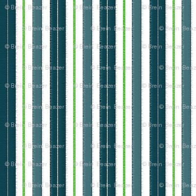 Seahawks Stripes
