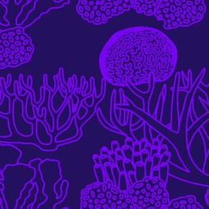 Coral (light purple on dark purple)