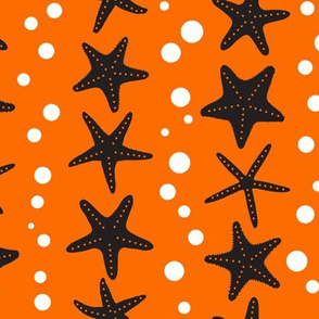 Starfish - Orange & Black