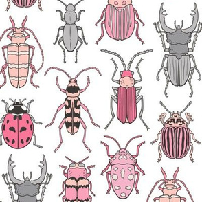Beetles Insects Forest Bugs Pink on White