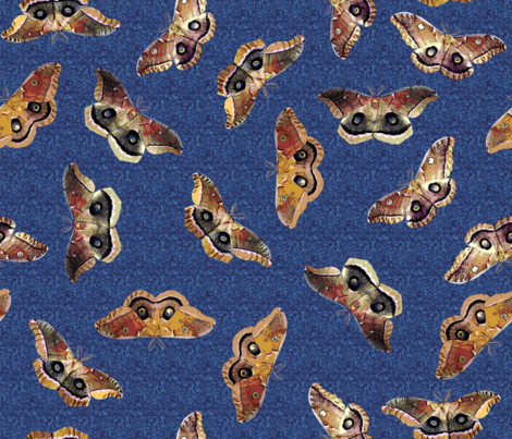 Polyphemus Moths on Blue fabric by engravogirl on Spoonflower - custom fabric