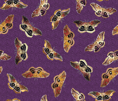 Polyphemus Moths on Purple fabric by engravogirl on Spoonflower - custom fabric