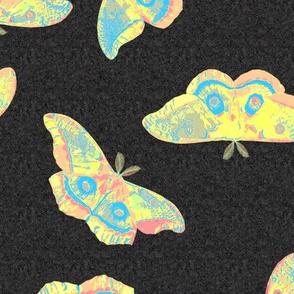 Psychedelic Polyphemus Moths
