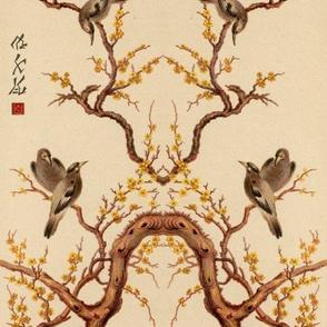 chinoise 2