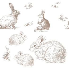 "12"" Barb's Bunnies"