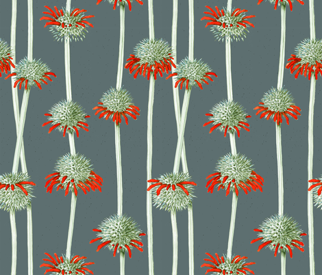 Lions Ear | Leonotis nepetofolia | gray fabric by shiere on Spoonflower - custom fabric