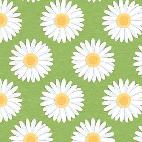 Spring Daisies: Greenery