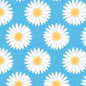 Spring Daisies: Blue Sky