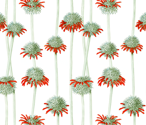 Lions Ear | Leonotis nepetofolia | white fabric by shiere on Spoonflower - custom fabric