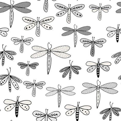 Rdragonflies_16_shop_preview