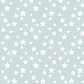 SouthWestern Stars