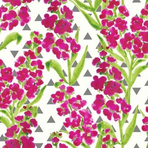 Watercolour Painted Stocks and Geometric Triangles - Bright Pink