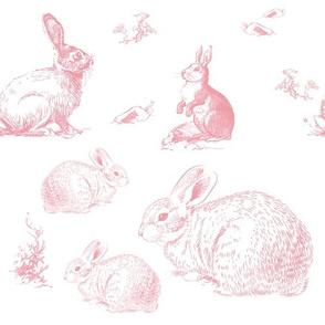"""12"""" Barb's Bunnies / Pink"""