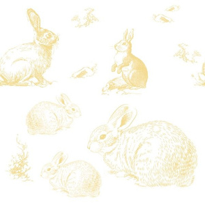 "12"" Barb's Bunnies / Yellow"