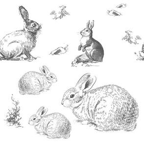 "12"" Barb's Bunnies / Grey"