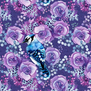 Blue Jay in Violet Flowers