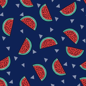 watermelon fabric // summer fruits fabric cute fruit food summer tropical design by andrea lauren - navy