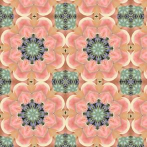 Peach Roses Star 0868