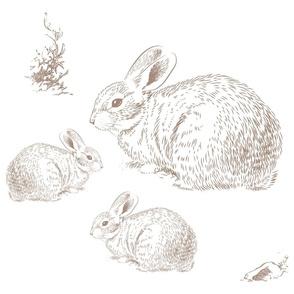 "18""x21"" Bunny Family / Pillow / FQ / Tan"
