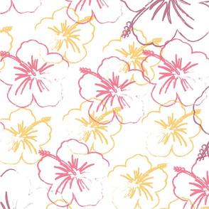 Ug Hibiscus_1