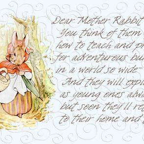 Mother Rabbit - Peter Rabbit decorative pillow - Ice Blue Scrolls