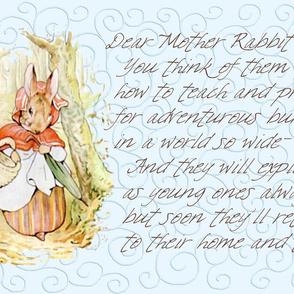 Mother Rabbit - Peter Rabbit decorative pillow - Light Blue Scrolls