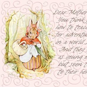 Mother Rabbit - Peter Rabbit decorative pillow - Light Pink Scrolls