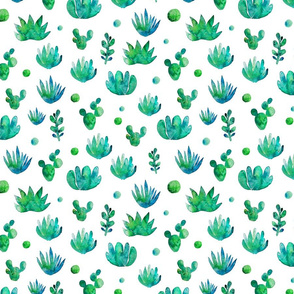 succulents_pattern