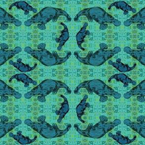 Blue Platypus Turquoise Sea