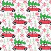 small Christmas cars on white