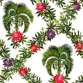 Palm-Hibiscus-