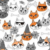 Rhallow_cats_orange_shop_thumb