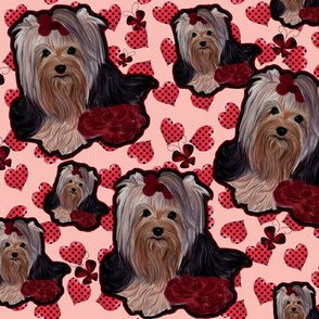 Yorkie - Rose hearts and dots - Minky