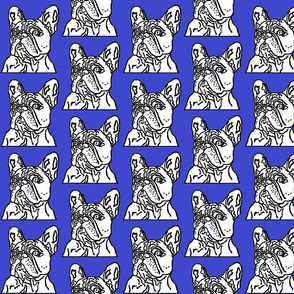 French_Bulldog_on_blue_background