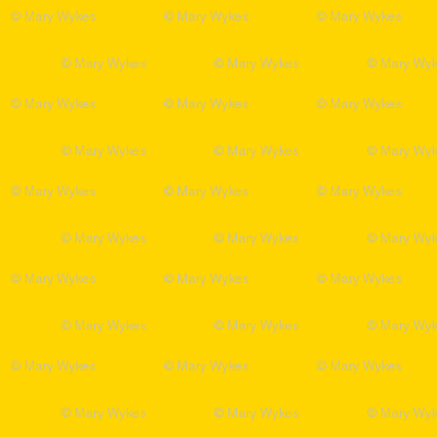 LS - Blazing Summer Sun  Solid Yellow