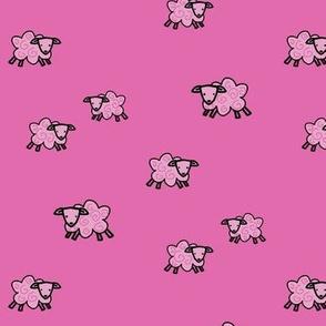 Cute Pink Fluffy Sheep
