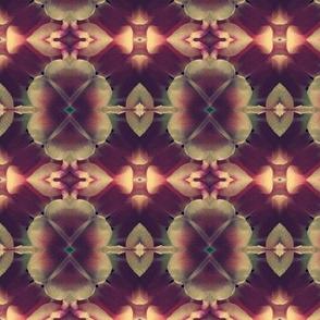 tulip circlestripe 1