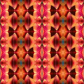 tulip circlestripe 2