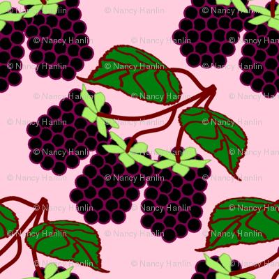 BlackBerryPink