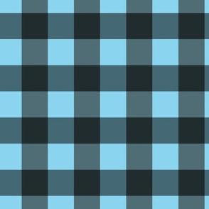 Blue-Black Check