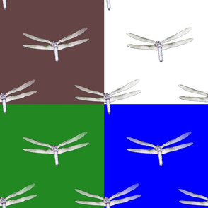 Dragonfly On 4 Colors