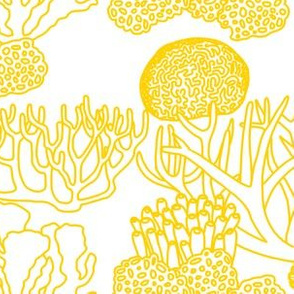 Coral (yellow on white)