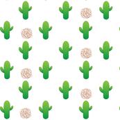 Cactus_Tumbleweed_on_White