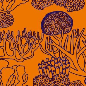 Coral (purple on orange)