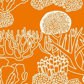 Coral (white on orange)